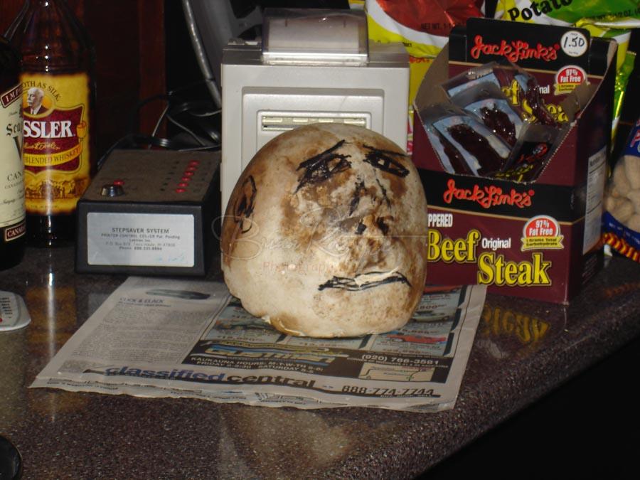 The Mushroom head at Jonis