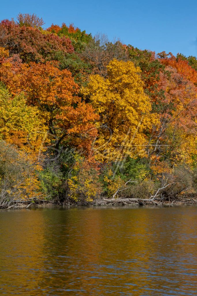 Fall Color Run up the Fox River Appleton Wi 3