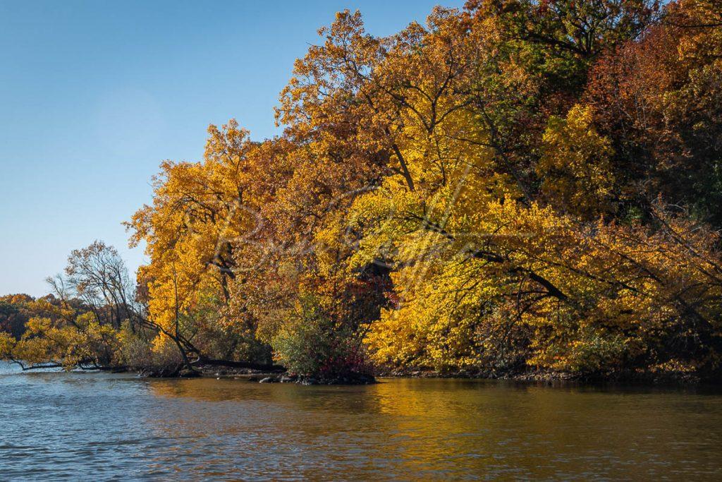 Fox River Fall Colors Run 2020 25